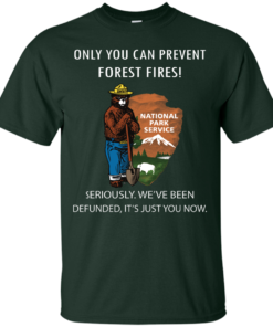 image 1035 247x296px Smokey Bear: Only You Can Prevent Forest Fires T Shirts, Hoodies