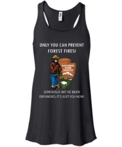 image 1036 247x296px Smokey Bear: Only You Can Prevent Forest Fires T Shirts, Hoodies