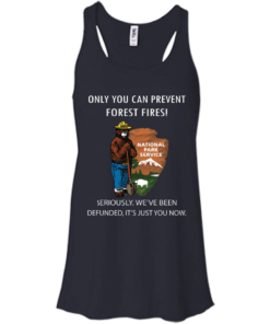 image 1037 247x296px Smokey Bear: Only You Can Prevent Forest Fires T Shirts, Hoodies