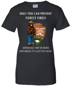image 1040 247x296px Smokey Bear: Only You Can Prevent Forest Fires T Shirts, Hoodies