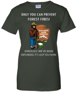 image 1041 247x296px Smokey Bear: Only You Can Prevent Forest Fires T Shirts, Hoodies