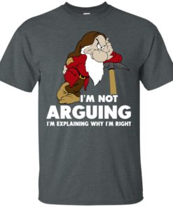 image 370 247x296px I'm Not Arguing I'm Explaining Why I'm Right T Shirts, Hoodies, Tank Top